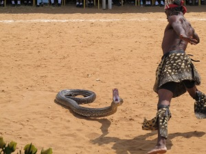 A snake performer was part of the festivities during the ceremony